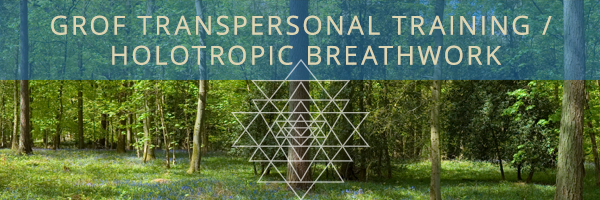 Holotropic Breathwork® at the Intersection of Meditation and Psychedelic Substances